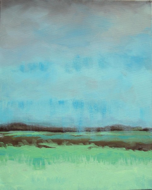 Lisa Horlander-Rainny Meddow-16inx20in-2011