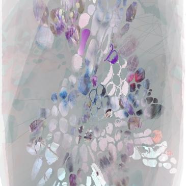 -Digital Collage