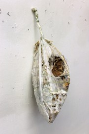 Enshroud -mixed media-about 12x6x6 in