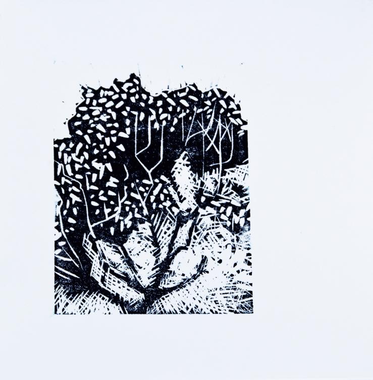 singular-crescendo